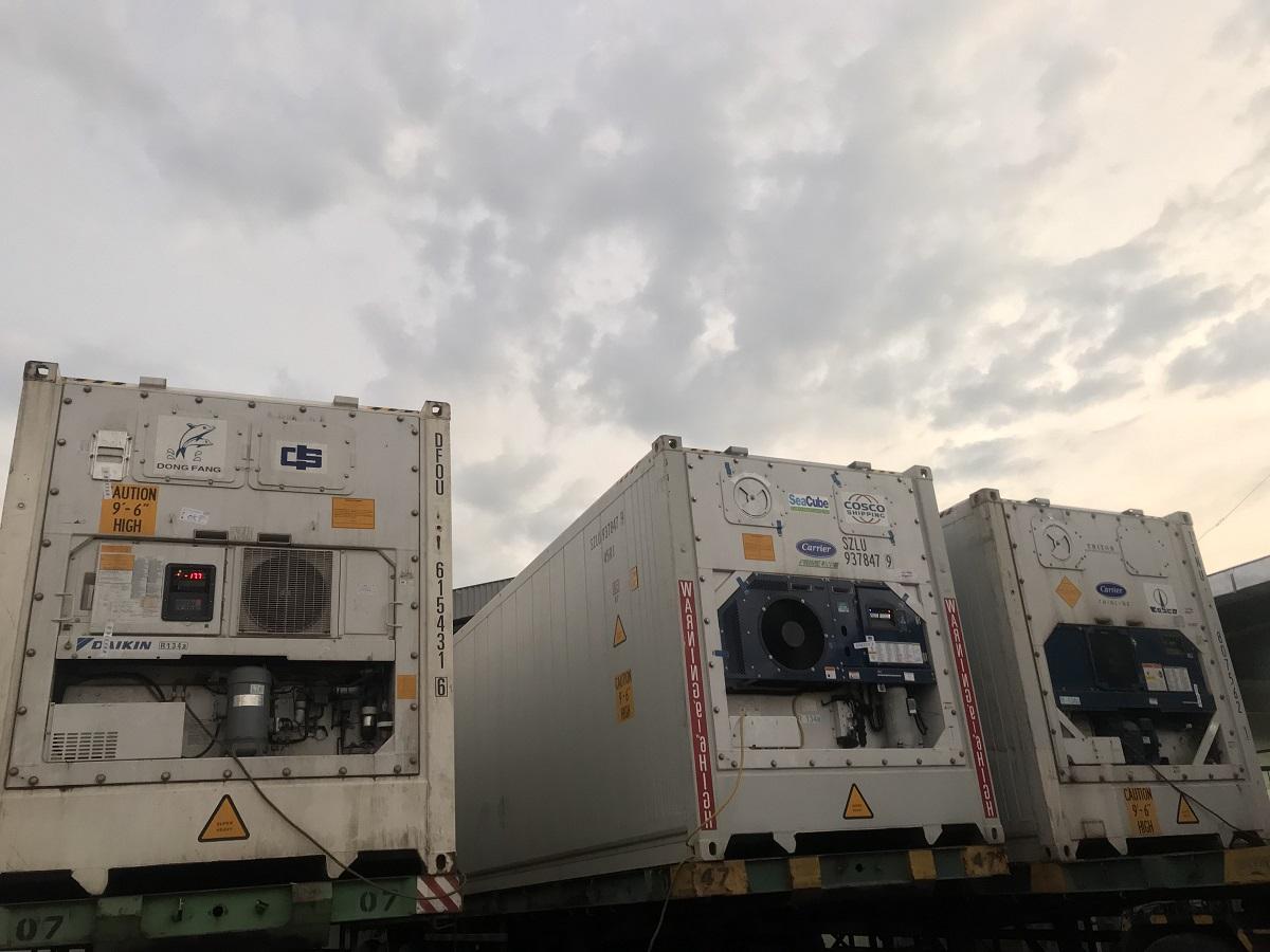 Hsn Group Emkl Service Custom Clearence Reefer Cargo